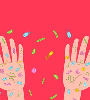 La macro y microbiota
