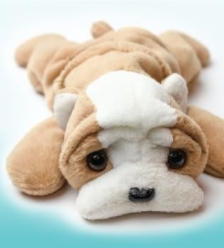 Las mascotas no son  juguetes